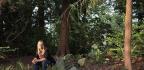 Washington State Braces For Eco-friendly 'Human Composting'