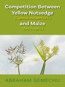 Competition Between Yellow Nutsedge (Cyperus Sp.) and Maize (Zea Mays L.)