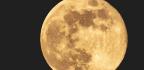 Shoot The Whole Moon