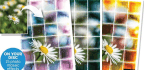 Create A Colourful Mosaic From Any Photo