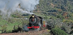 Rocks And Overgrown Track Halt Special In Further Shame For South African Steam