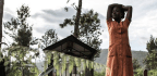 WHO Sees Progress In Ebola Response, But Others See A Grimmer Reality