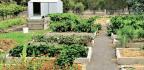 The Fertile acre