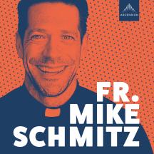 The Fr. Mike Schmitz Catholic Podcast