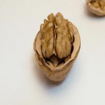 Gun Culture Radio