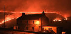 UK Gardeners Given Tips To Avoid Wildfires As Climate Crisis Raises Risk
