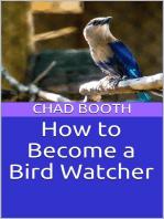 How to Become a Bird Watcher