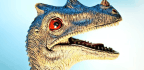 Fossils Bust Myth About Mammals In Dinosaur Age