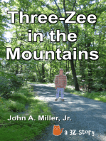 Three-Zee in the Mountains