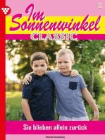 Im Sonnenwinkel Classic 2 – Familienroman