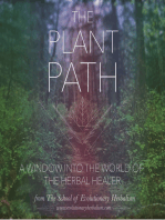 5 Ways to Deepen Your Connection to Plants