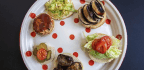 3 Tasty — And Healthy — Meatless Burgers For Summer Grilling