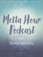 Ep. 27 - Introduction to Metta