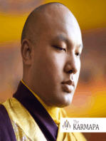 Gyalwang Karmapa Teaches on the Nature of Mind and Using Everyday Moments as Meditation (Podcast Episode #004)