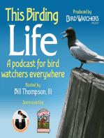 Best of This Birding Life