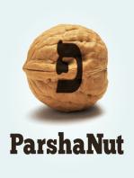 THE SECRET OF THE WORLD - Parshat Behar-Bechukotai (Season 2, Ep. 29)