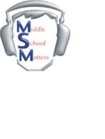 MSM 336