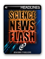 Neutrinos not faster-than-light after all?