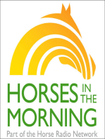 Confessions of a Timid Rider, Saving Horse Racing in America, July 1, 2019 by Omega Alpha Equine