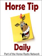 1297 – Half Halt Tips and Reminders