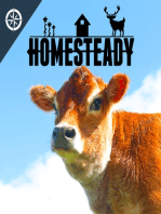 To Sheep or Not To Sheep - An in depth look at farming with grass fed sheep, lamb, raising meat on pasture, and if it is a good idea for someone who is small scale farming or homesteading