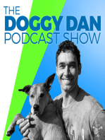 Show 0 - Introduction to Doggy Dan and The Online Dog Trainer
