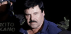 Now El Chapo's Back In Jail, Hunt Is On For The Mexican Drug Baron's Money
