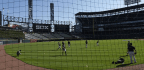 White Sox Become One Of First MLB Teams To Extend Protective Netting To Foul Poles