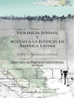 Violencia juvenil y acceso a la justicia.: Tomo I. América Latina