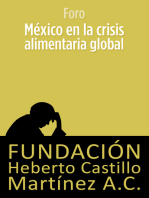 México en la crisis alimentaria global