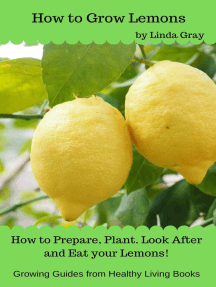 How to Grow Lemons: Growing Guides