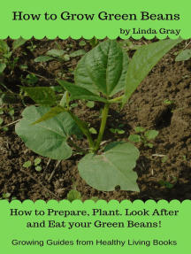 How to Grow Green Beans: Growing Guides