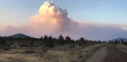 Tucker Fire Explodes To 13,000 Acres, Becomes Largest Blaze On National Forest Lands In California This Year