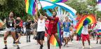 Queer As Quantum Joy