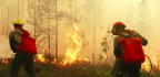 As Siberia Burns, Russia Chokes