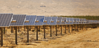 California Farmers Are Planting Solar Panels As Water Supplies Dry Up
