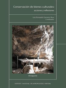 Conservación de bienes culturales: acciones y reflexiones