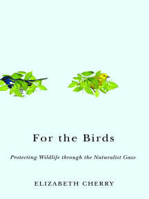 For the Birds: Protecting Wildlife through the Naturalist Gaze