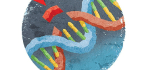 Doctors Altered A Person's Genes With CRISPR For The First Time In The U.S. Here's What Could Be Next.