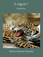 O Jaguar !