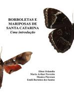 Borboletas E Mariposas De Santa Catarina