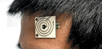Wearable Sensor Detects What Your Sweat Is Saying