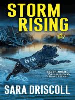 Storm Rising