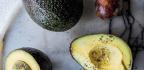 The Avocado Tree