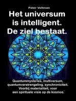 Het universum is intelligent. De ziel bestaat. Quantummysteries, multiversum, quantumverstrengeling, synchroniciteit. Voorbij materialiteit, voor een spirituele visie op de kosmos.