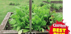 Product Reviews Garden Forks