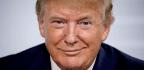 Never Trumpers Want a GOP Alternative. Most Republicans Don't.
