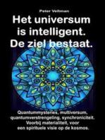 Quantummysteries, multiversum, quantumverstrengeling, synchroniciteit. Voorbij materialiteit, voor een spirituele visie op de kosmos.