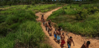 Amazon's Indigenous Warriors Take On Invading Loggers And Ranchers