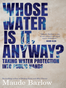 Whose Water Is It, Anyway?: Taking Water Protection into Public Hands